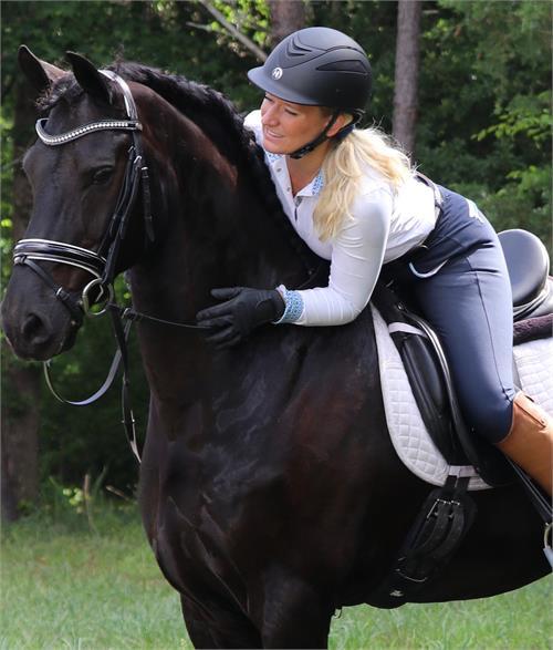 Myke ⁓ Top Ten Friesian Horse For Sale In Texas