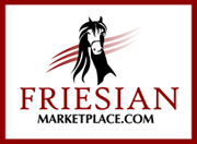 Friesians for sale: Friesian Marketplace
